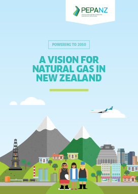 A Vision for Natural Gas in New Zealand