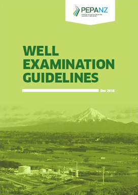 Well Examination Guidelines